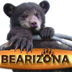 logo_bearizona2