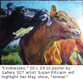 20150421_PitcairnKindnesses57