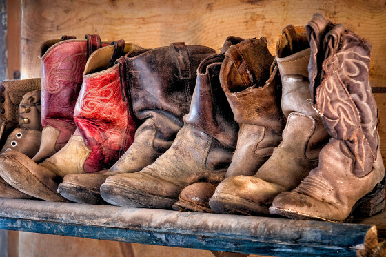 Carol's Boots by Elaine Blevin